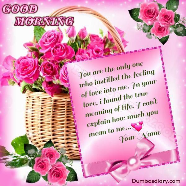 Martina Orange Rose Morning wishes