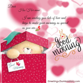 teddy bear with morning card cover